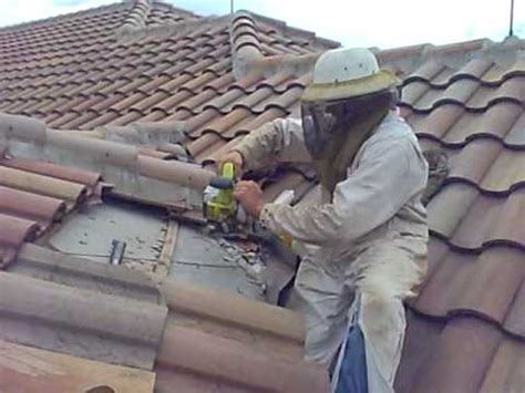 Honey Bees in Barrel Tile Roof - Orlando Bee Removal 321