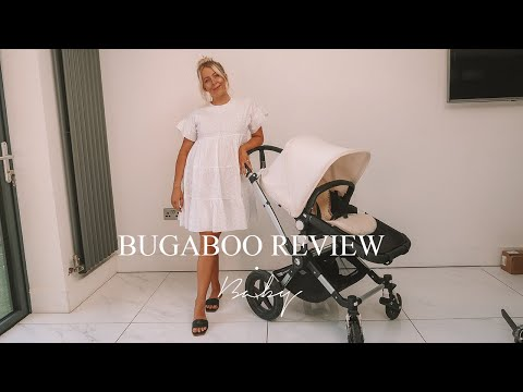 A General Discussion of the Bugaboo Cameleon 1 and 2