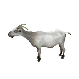 Animated gif of goat chinese zodiac and free images ~ Gifmania