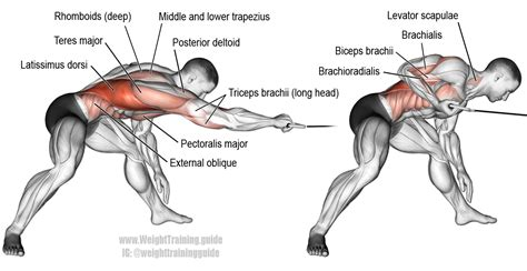 Bent-over one-arm cable pull instructions and video