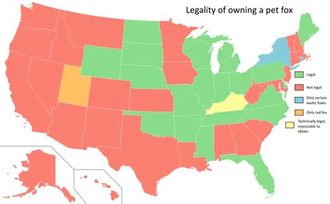 Legality of owning a pet fox by US state - Vivid Maps
