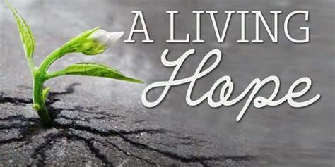 Living With Hope, Hurts, Habits And Hangups   Northstar Church