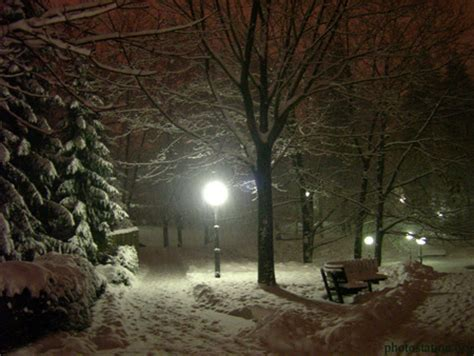 Silent night - Winter & Nature Background Wallpapers on