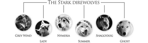 Day 24: What Is a Direwolf? — Making Game of Thrones