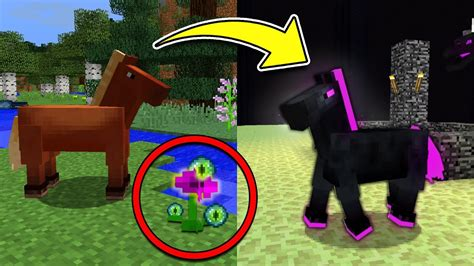 How to Spawn the Secret ENDER HORSE in Minecraft Pocket